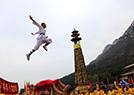 国际少林武术节