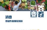 """一组图看懂中国经济""""三季报""""亮点:数据反映出哪些新变化?"""