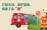 图解森林火灾:因何引发,如何防范与自救?