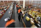 國家郵政局發布數據:去年我國人均使用快遞36件