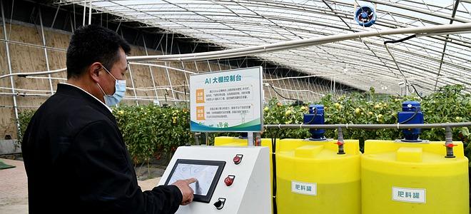 """""""中国蔬菜之乡""""寿光实现大棚智能管理"""
