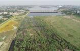 石家莊:滹沱河兩岸建成綠色生態景觀長廊