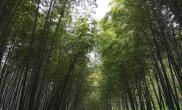 河南叶县:文化旅游携起手 脱贫攻坚好帮手