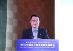 苏铁:创新跨境电商法律制度 提升全球治理海关话语权
