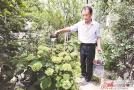 """徐州新光小区 """"环保达人""""王寿廷助力文明创建"""