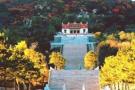 中金黄金在海棠山国家自然保护区违法填埋尾矿