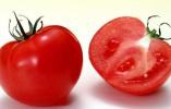 科学研究发现男人吃西红柿有一种新功效