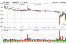 银鸽投资:停牌期未满调整交易方案