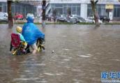 """台风""""温比亚""""致使河南大范围降雨 豫东出现严重内涝"""