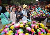 河南开封:八方游客赏菊来