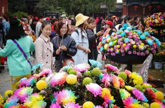 河南開封:八方遊客賞菊來