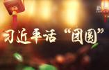 """习近平话""""团圆"""""""