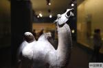北京:国博呈现丝绸之路文物精品展 13国234件文物齐亮相