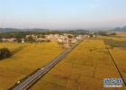 河北:建立财政支持新型农业经营主体政策体系